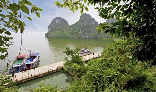 Trip Ideas tree water outdoor Boat River landform geological phenomenon waterway tourism Jungle fjord rolling stock Canal traveling