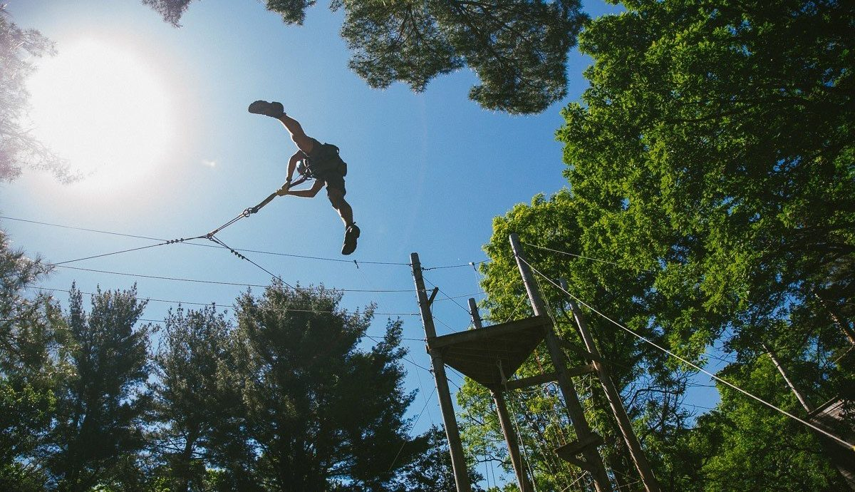 Offbeat tree outdoor sky woody plant Forest Adventure extreme sport sports plant wooded