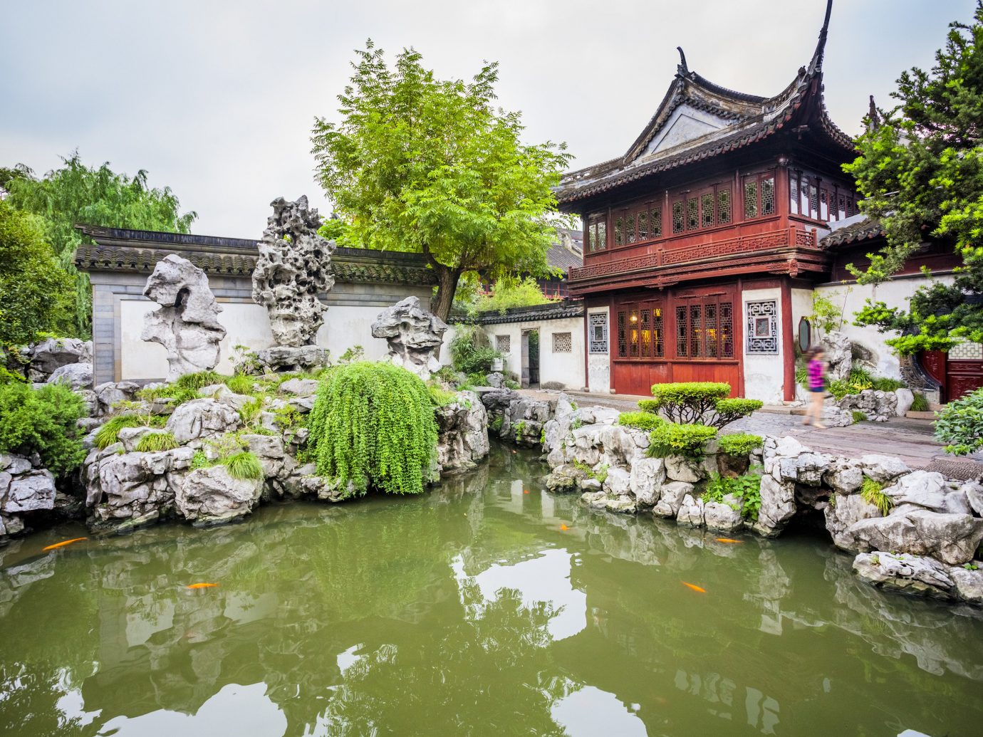 China china rose Shanghai Travel Tips Trip Ideas chinese architecture water reflection tree Garden plant pond watercourse pagoda flower tourist attraction landscape leisure tourism