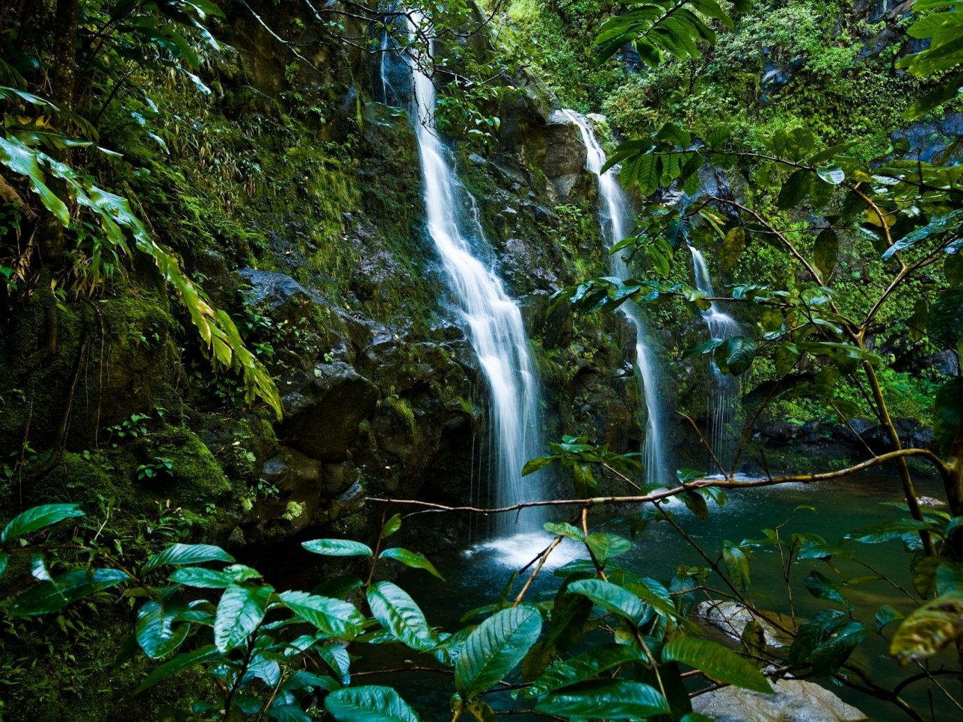 Natural wonders Nature Romance Trip Ideas view Waterfall tree water outdoor habitat vegetation natural environment rainforest body of water Forest wilderness old growth forest water feature Jungle woodland stream tropics surrounded wooded