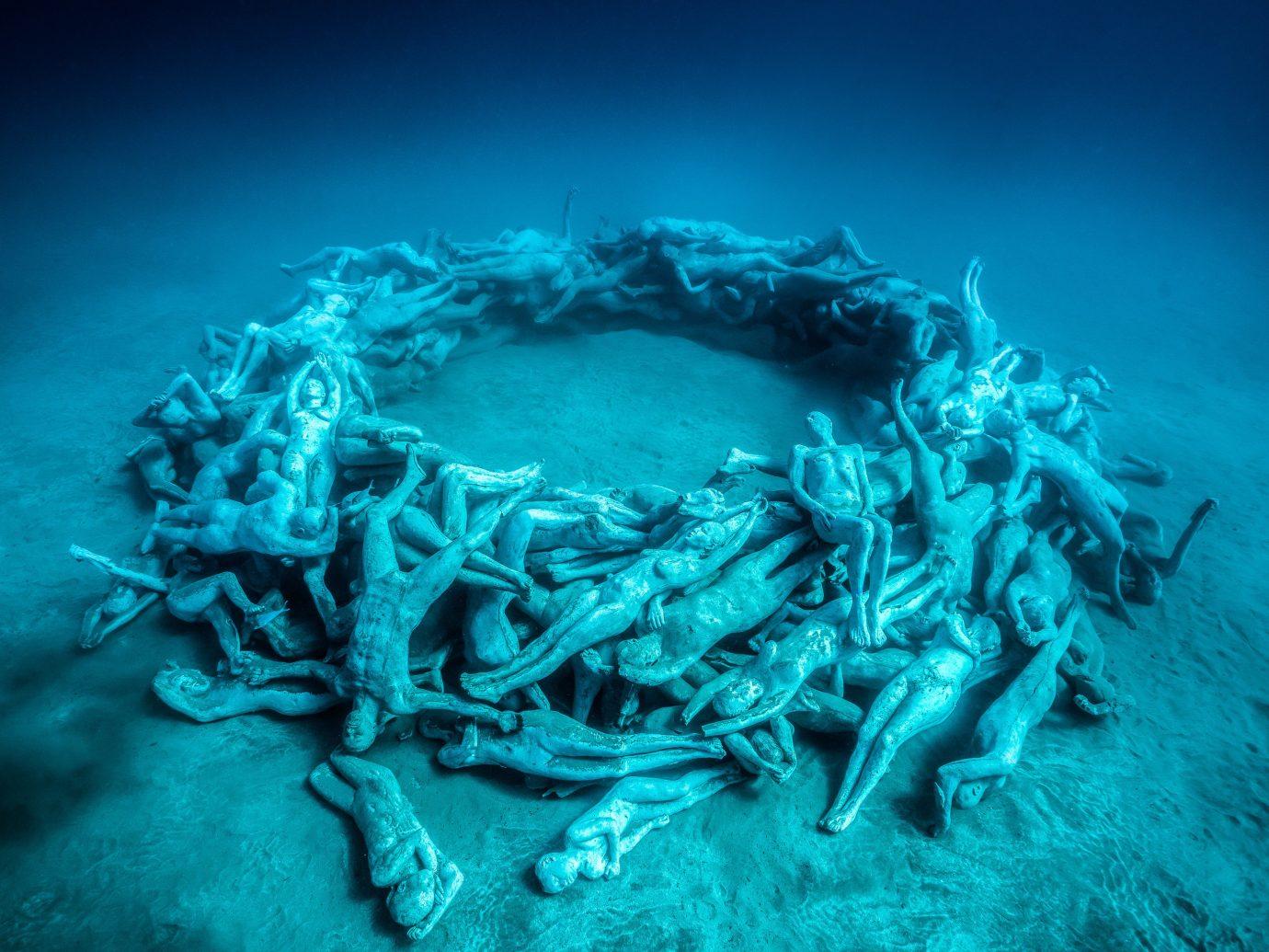 Arts + Culture Offbeat Scuba Diving + Snorkeling Trip Ideas arthropod animal invertebrate crab blue marine biology underwater biology reef Ocean Sea deep sea fish coral reef lobster