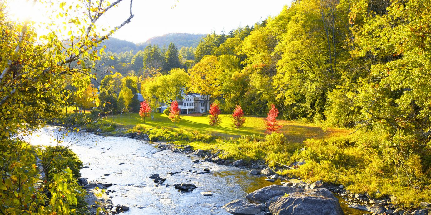 Food + Drink Outdoors + Adventure Trip Ideas Weekend Getaways tree outdoor water Nature leaf yellow autumn reflection River plant stream bank watercourse landscape riparian zone creek biome Lake spring grass temperate broadleaf and mixed forest sky pond surrounded Forest wooded