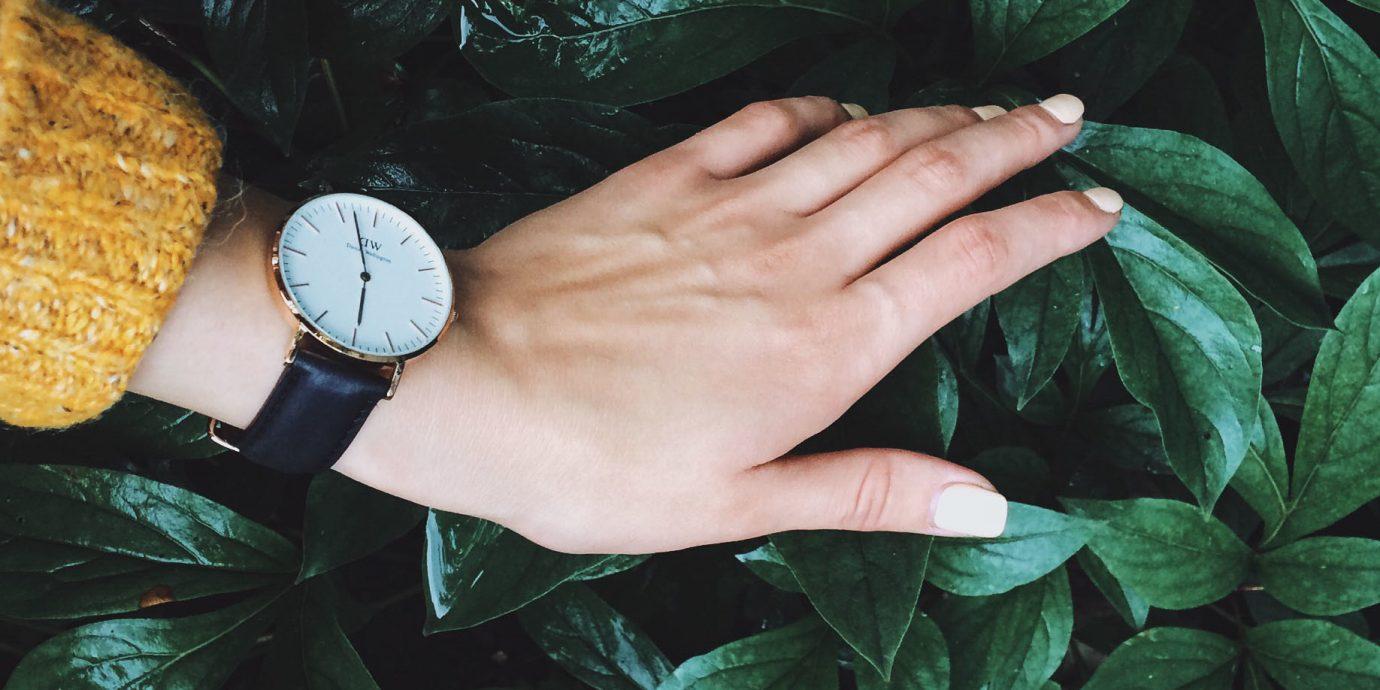 Hotels shopping Style + Design Trip Ideas green leaf plant person flora hand black hair girl finger grass flower