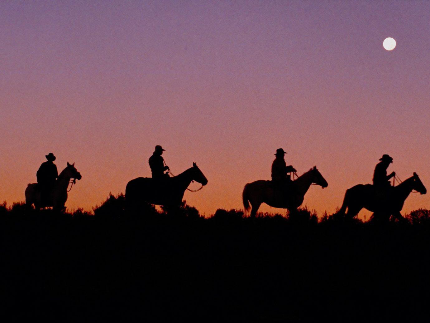 Adventure sky outdoor horse like mammal dark silhouette horse sunrise Sunset evening ecoregion light mustang horse dusk dawn fun landscape plain field image aircraft