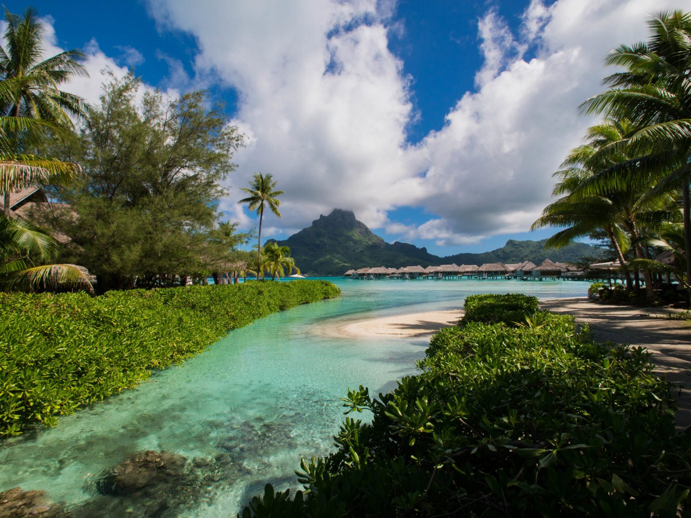 Hotels tree sky grass outdoor Nature geographical feature shore body of water Coast green Sea water Beach tropics Ocean vacation River arecales bay caribbean landscape Jungle Lagoon cove Island flower plant surrounded lush