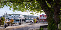 Trip Ideas tree outdoor bus transport Town neighbourhood City human settlement tourism vehicle lined