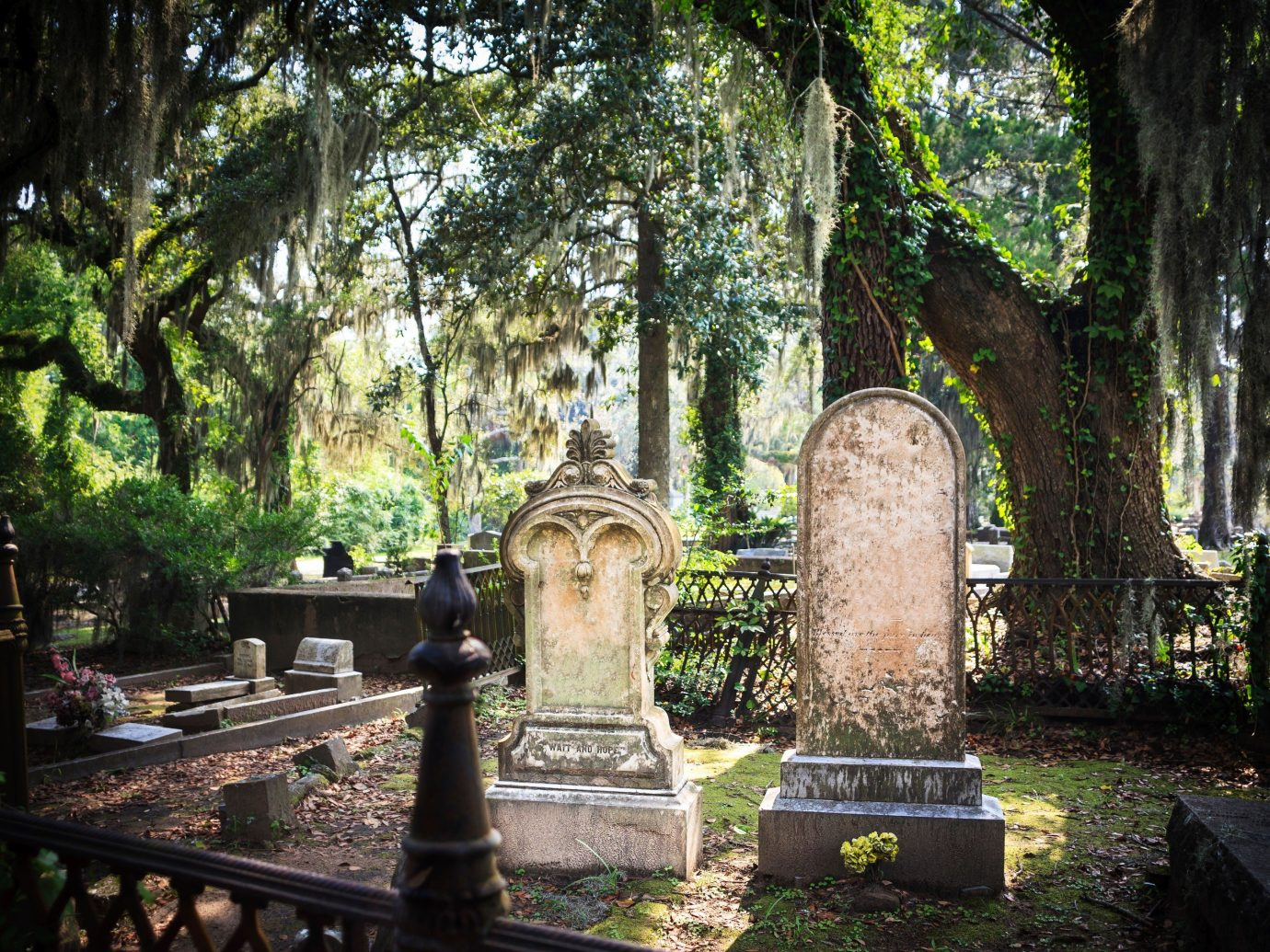 Trip Ideas Weekend Getaways tree outdoor park cemetery grave plant shrine Garden temple place of worship wood