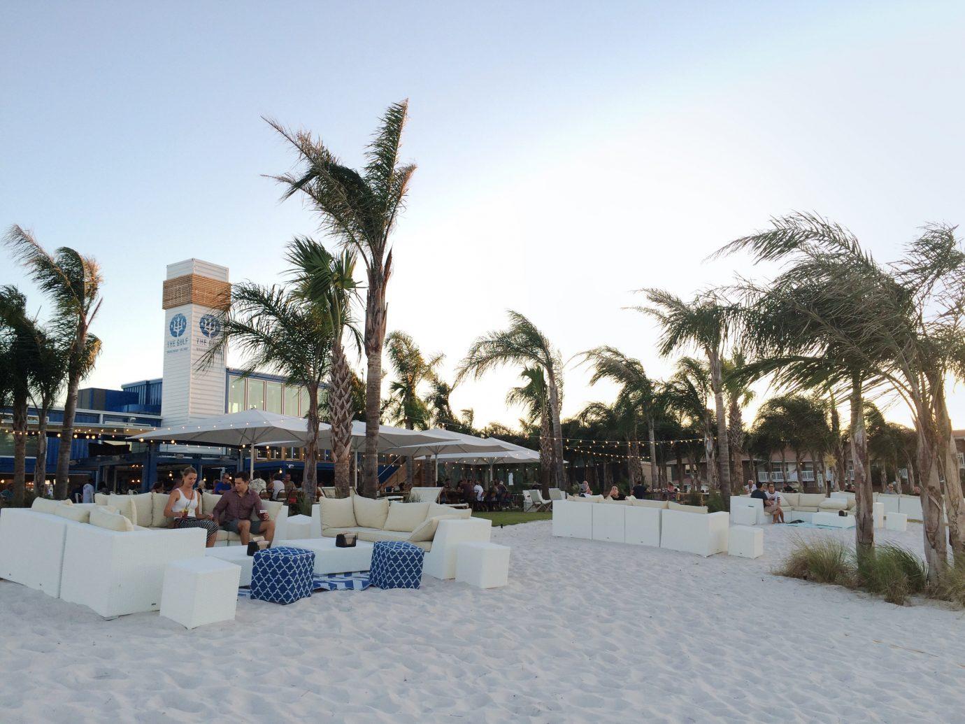 sky outdoor tree snow Resort Beach weather Winter vacation arecales walkway