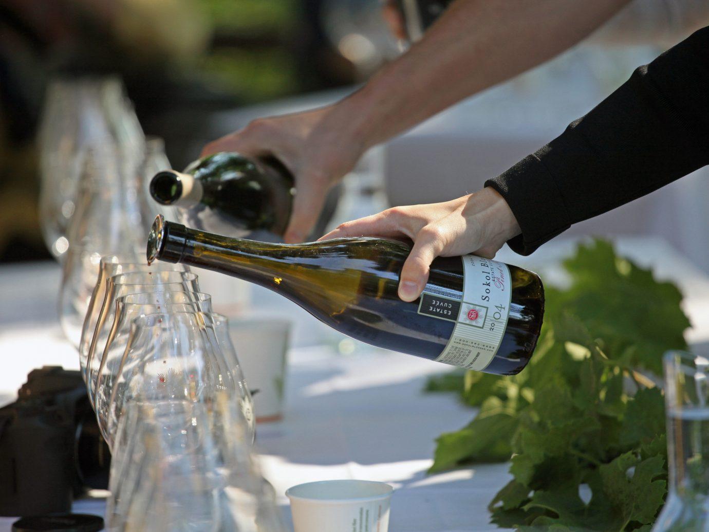 Offbeat person indoor Drink sense wine
