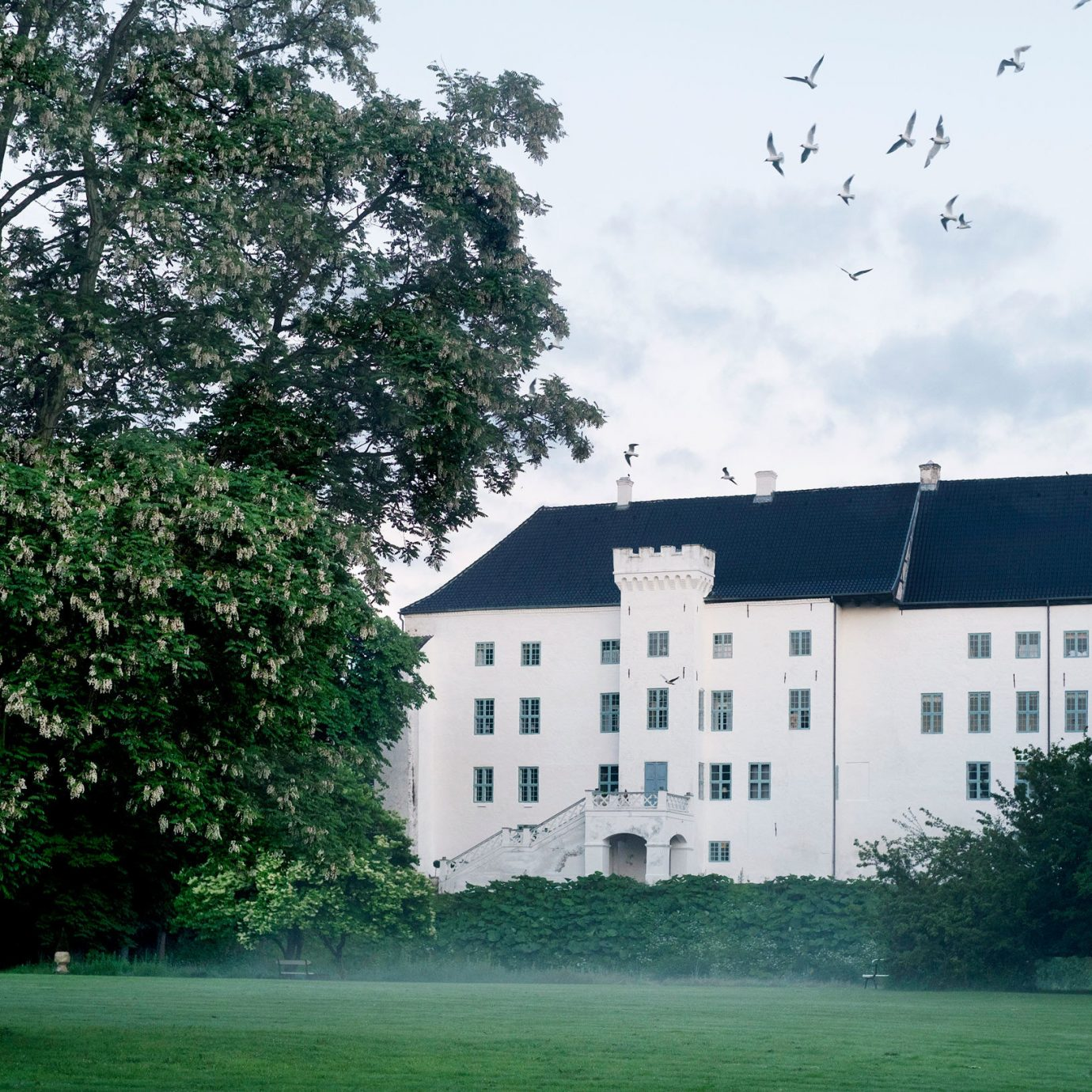 Denmark Finland Hotels Landmarks Luxury Travel Sweden tree outdoor grass house estate property sky Architecture leaf daytime château building home manor house plant facade campus mansion plantation residential