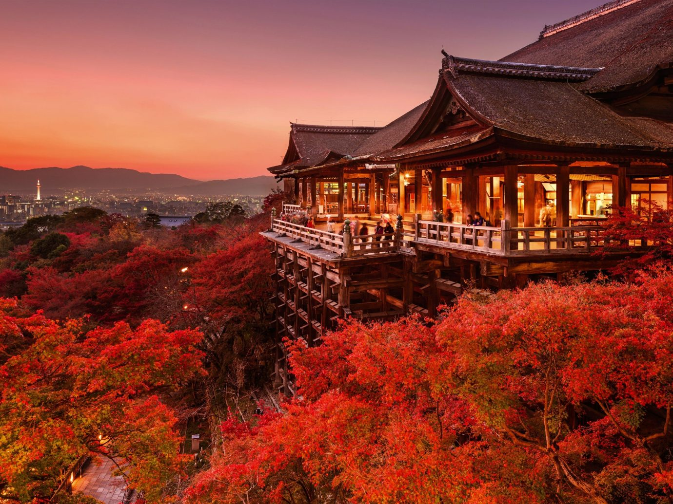 Trip Ideas outdoor sky tree autumn season leaf mountain evening Sunset dusk traveling hillside lush