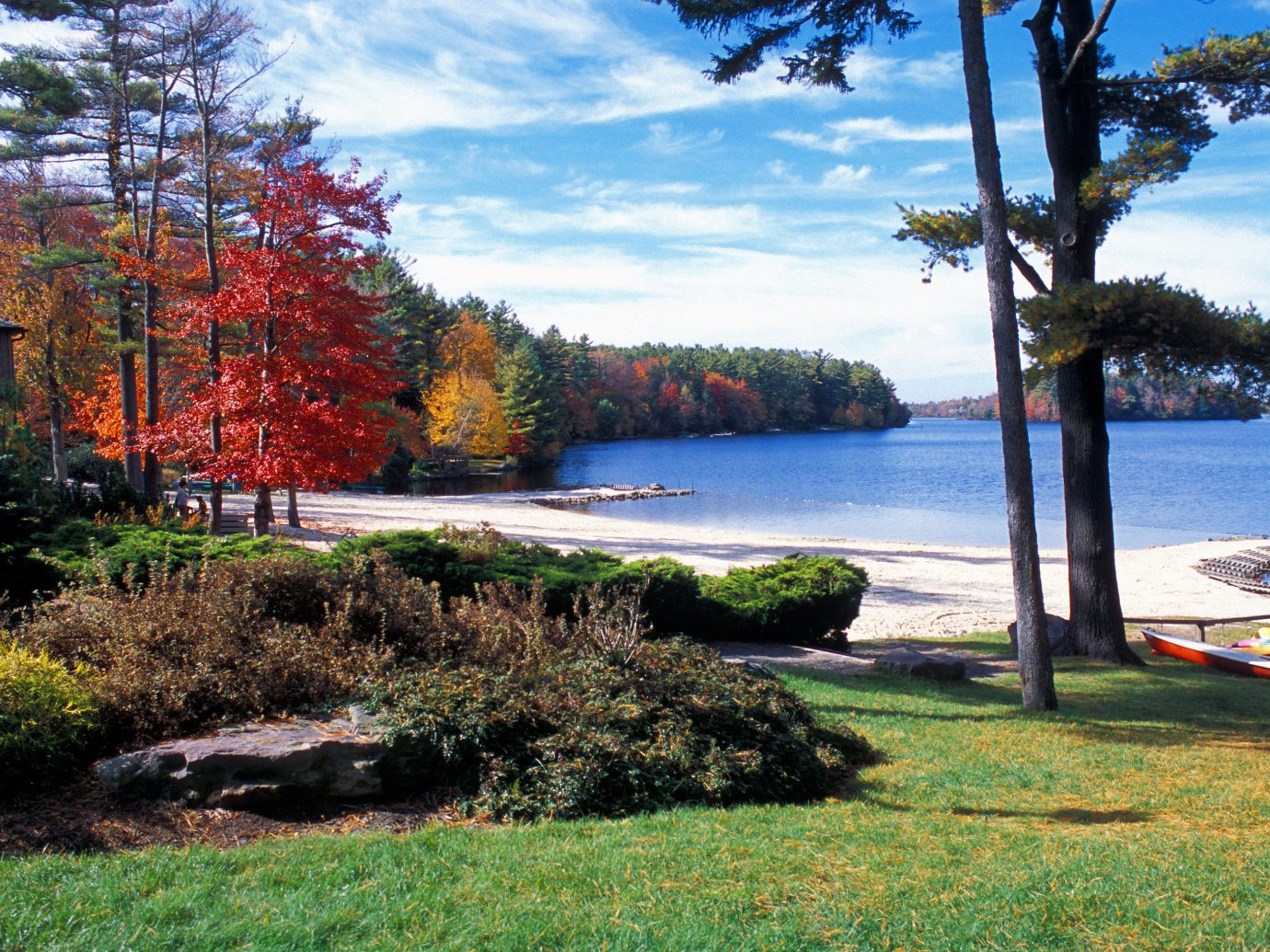 Outdoors + Adventure Road Trips Trip Ideas outdoor tree grass sky water Nature body of water leaf Lake shore plant reflection landscape Coast bay bank autumn loch Sea inlet day