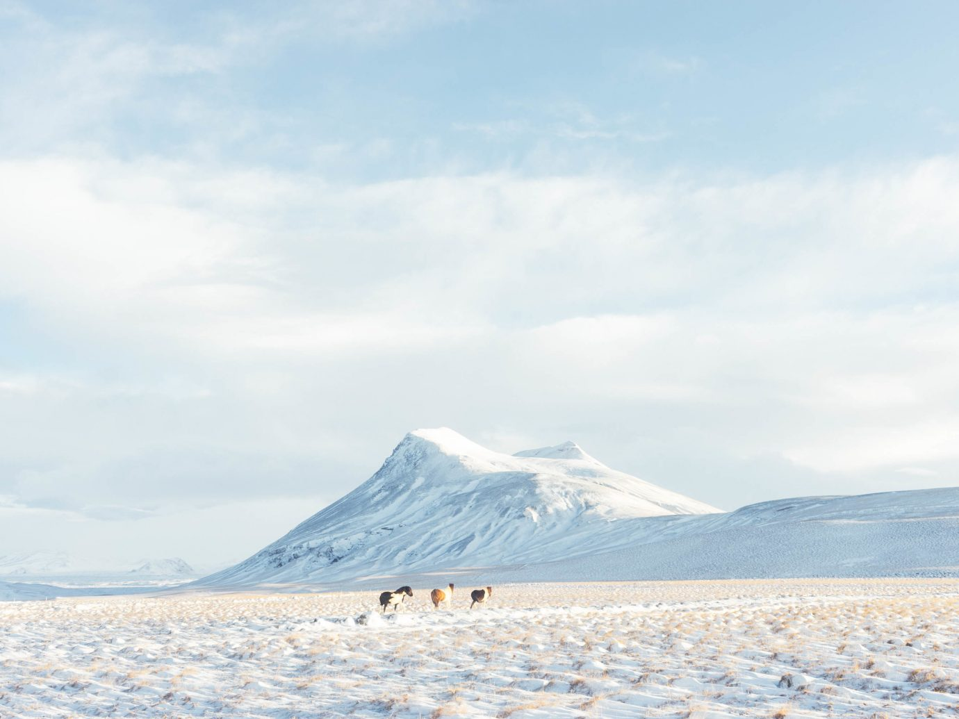 Iceland Travel Tips sky mountain outdoor snow habitat Nature arctic natural environment arctic ocean Winter tundra ice Sea sand day distance highland
