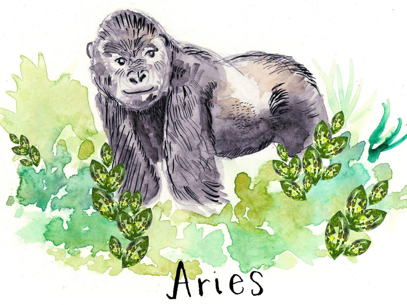 Trip Ideas text mammal cartoon art sketch drawing illustration