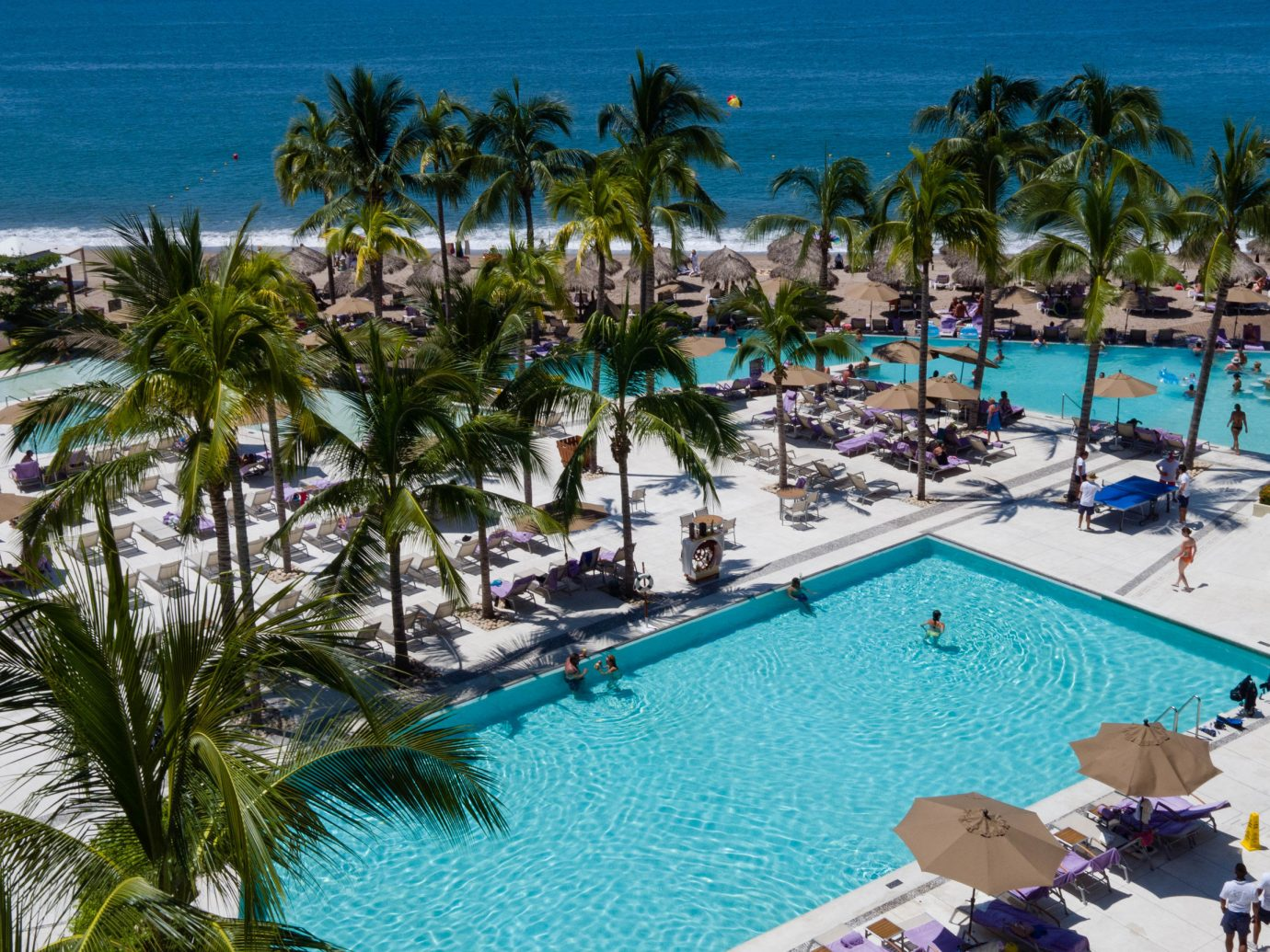 Hotels tree palm Resort outdoor leisure swimming pool vacation caribbean marina Water park estate resort town Beach Pool Lagoon plant lined furniture