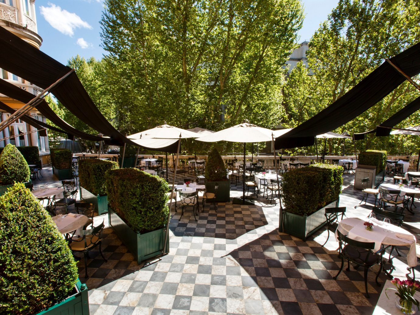 Boutique Hotels Hotels Italy Luxury Travel Romantic Hotels Rome tree outdoor public space Resort flower restaurant outdoor structure furniture