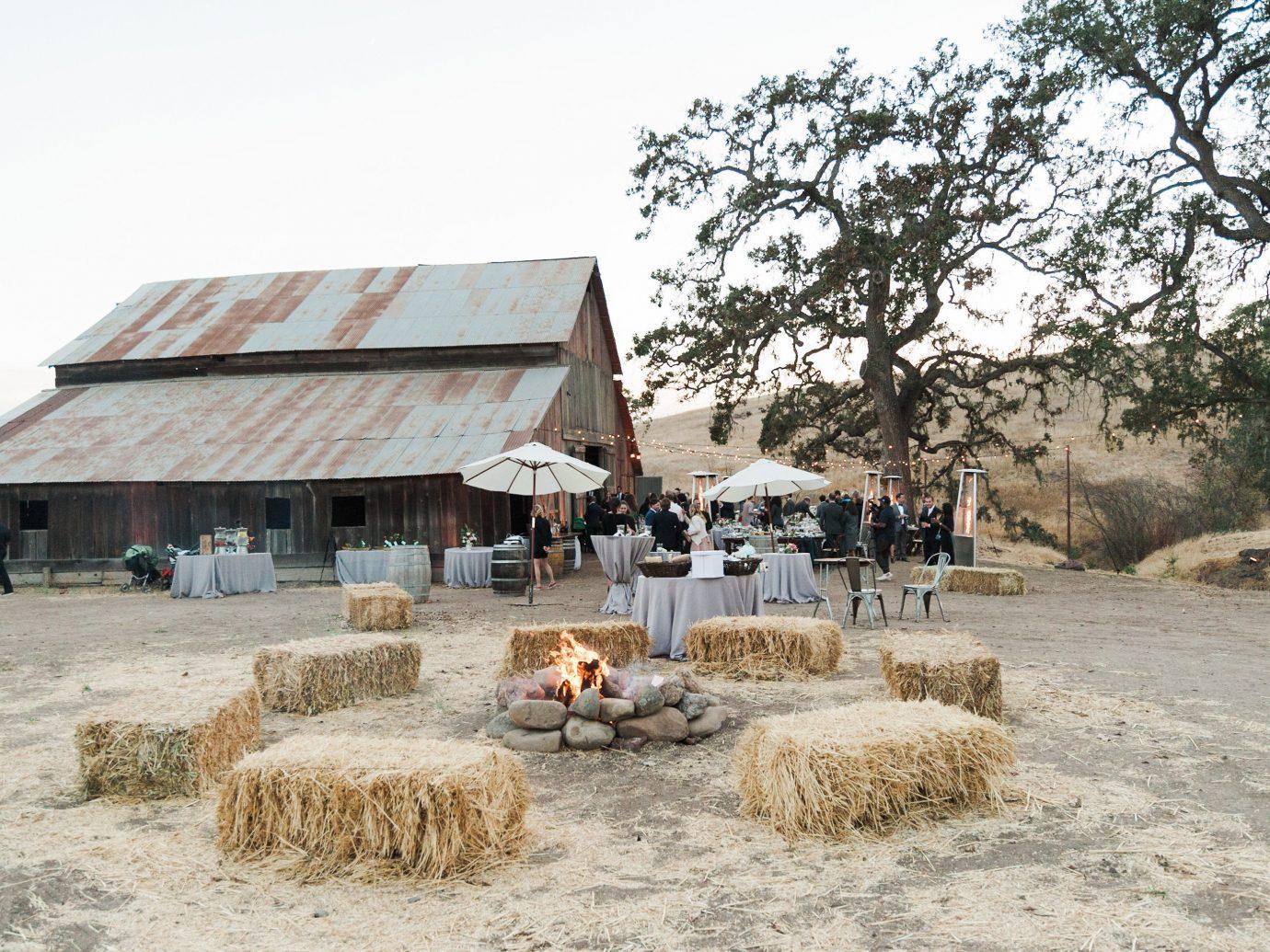 Food + Drink outdoor tree hut Village