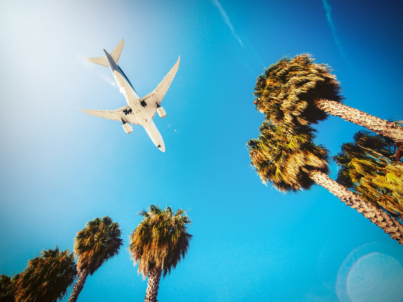 Travel Tips sky Nature blue flying reflection atmosphere of earth macro photography sunlight flower Sea computer wallpaper