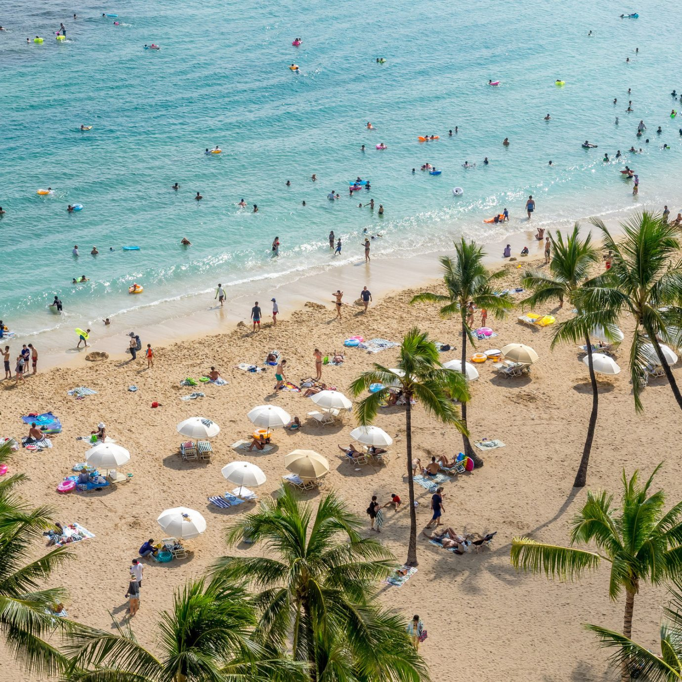 Arts + Culture Brooklyn Canada Hawaii Los Angeles Morocco New York Oahu Offbeat Scotland Style + Design Toronto outdoor ground Beach body of water Nature Sea shore palm vacation Ocean people Coast arecales sand tropics sandy bay caribbean Resort lined gathered day