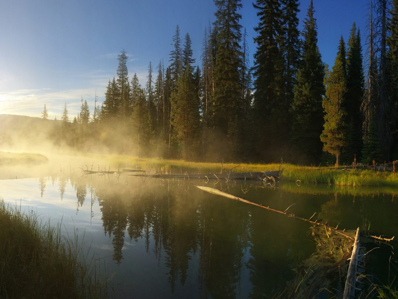 Fall Travel Mountains + Skiing National Parks Outdoors + Adventure Trip Ideas tree outdoor sky Nature reflection water Lake morning atmosphere sunlight bank pond River water resources evening biome wetland grass landscape dawn Forest computer wallpaper mist water feature meadow day