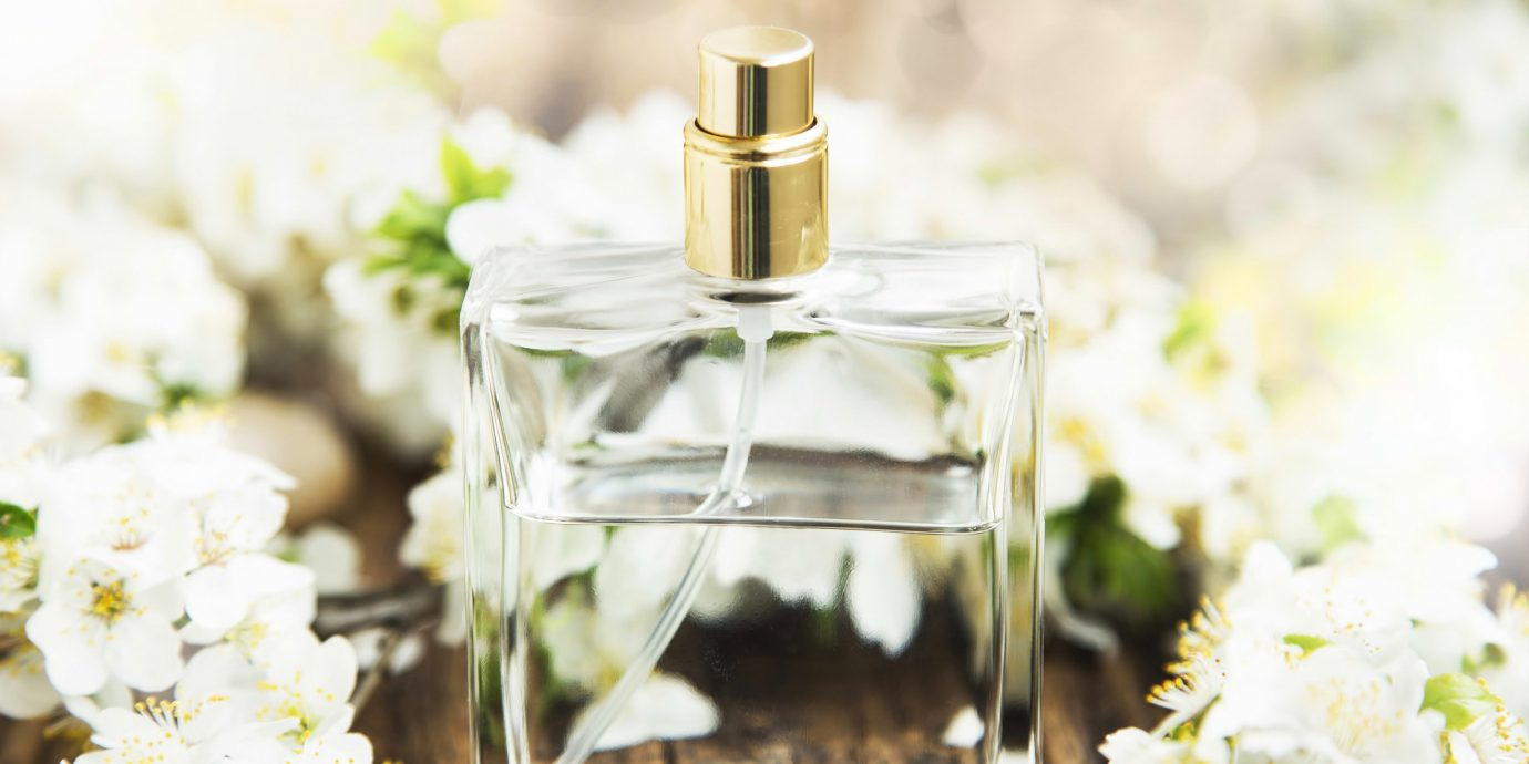 Style + Design cake perfume flower plant land plant spring cosmetics flowering plant food processor