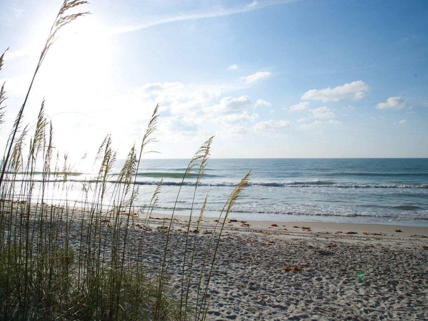 sky outdoor habitat shore Beach Sea body of water horizon water Ocean Coast cloud wave morning Nature sunlight sand reflection wind