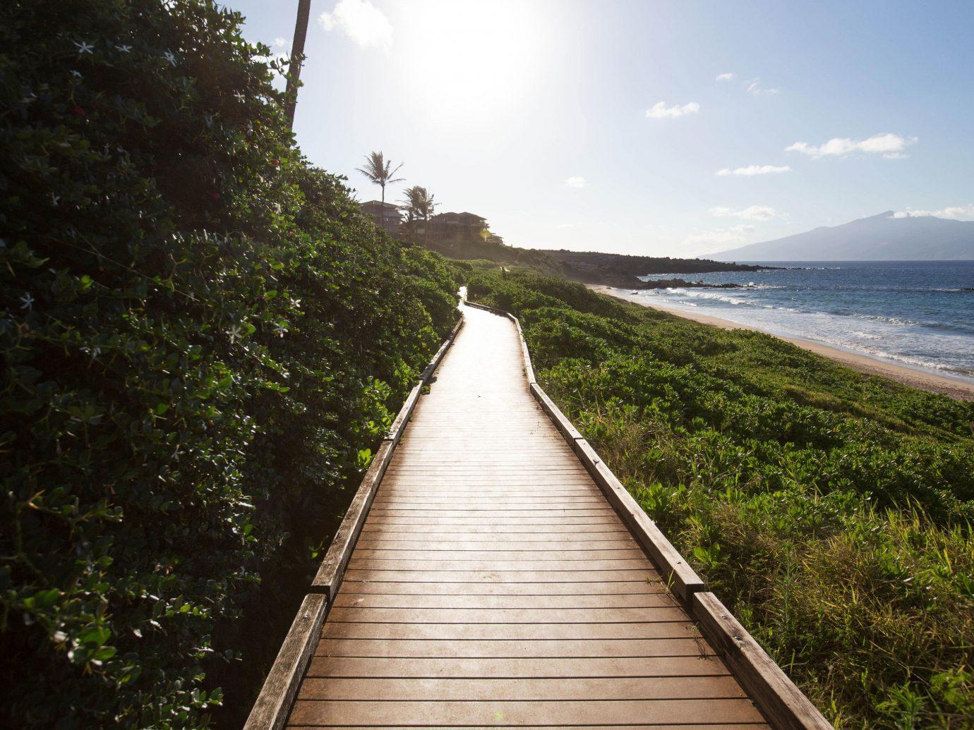 Beach sky outdoor tree grass water River wooden Coast vacation Sea walkway sunlight waterway overlooking lush