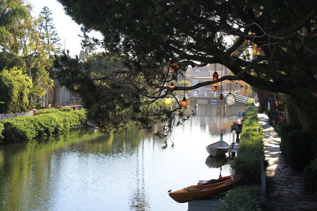Trip Ideas tree outdoor water River reflection waterway flower Canal tourism leaf Garden pond autumn