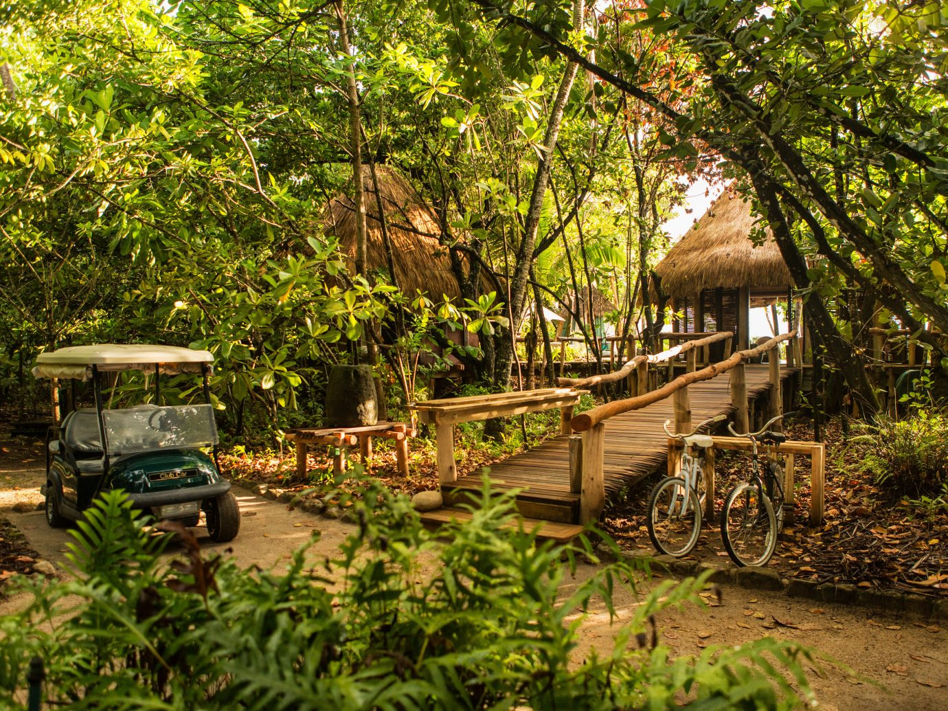Luxury Travel Trip Ideas tree outdoor vegetation plant nature reserve building Jungle arecales rainforest leaf real estate palm tree Forest landscape outdoor structure woodland cottage Resort water leisure house walkway area shade lined Garden wooded
