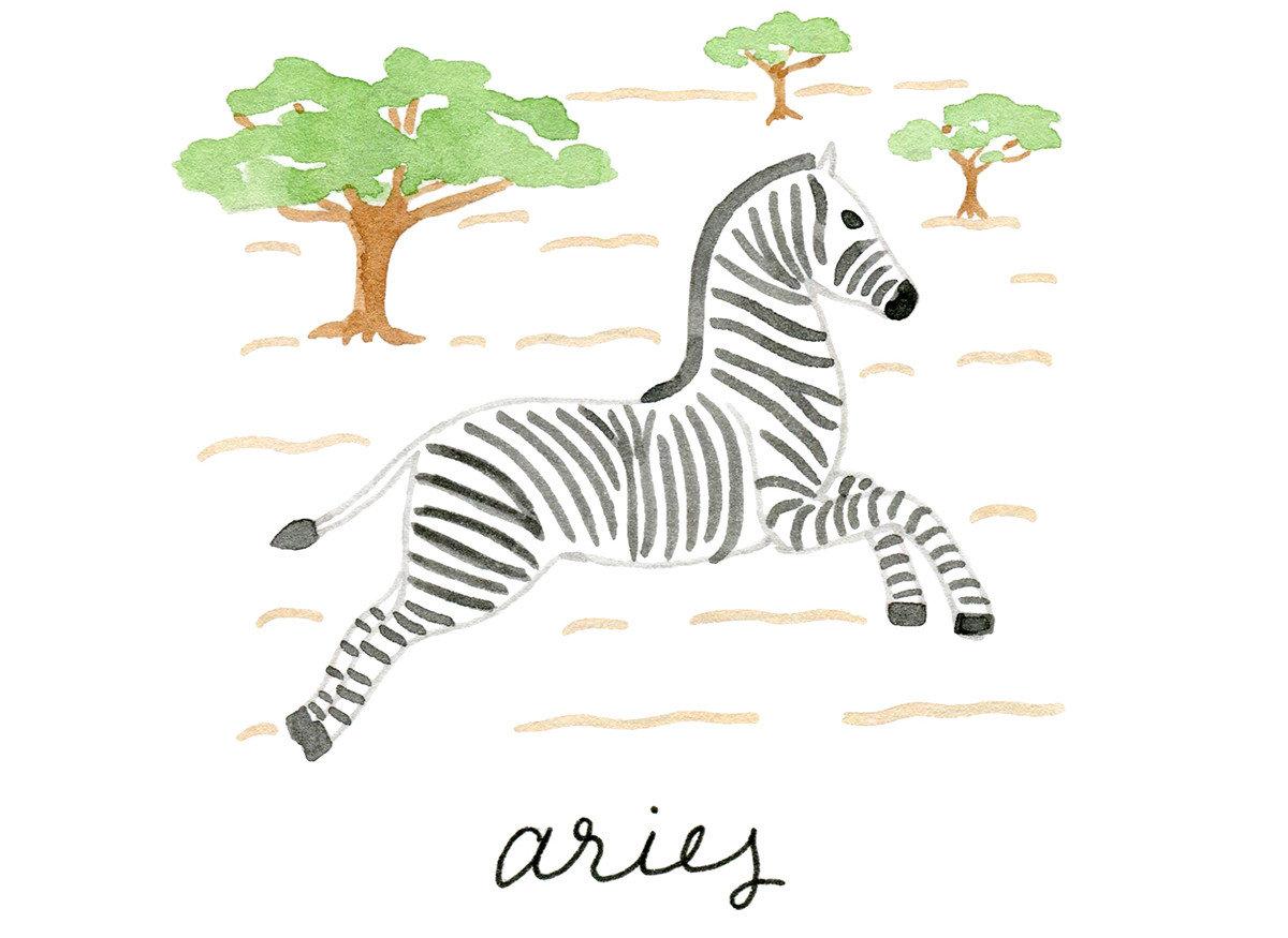 Trip Ideas mammal cartoon zebra horse like mammal animal figure illustration giraffidae