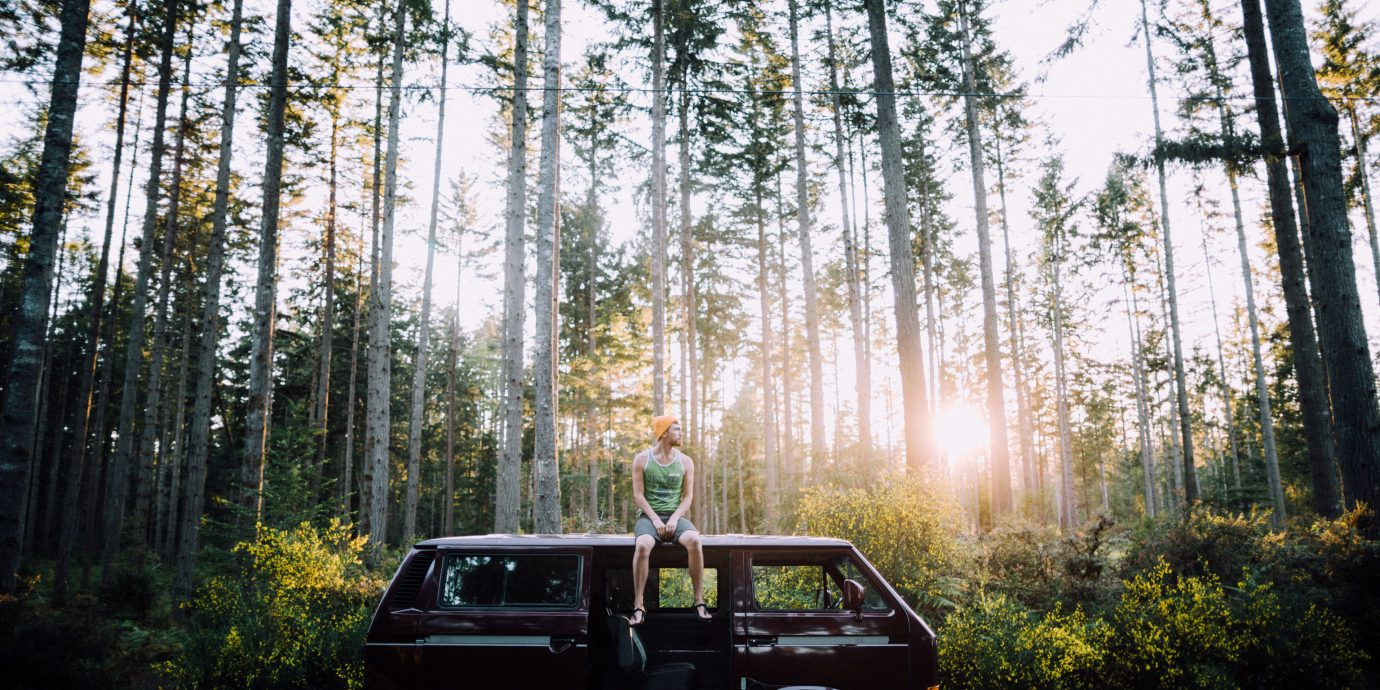 Packing Tips Road Trips Travel Safety Travel Tips tree outdoor car vehicle ecosystem woody plant Forest woodland autumn wooded