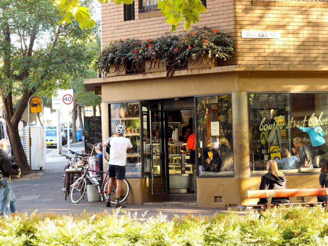 Trip Ideas outdoor tree Town neighbourhood City road urban area human settlement tourism street Downtown restaurant