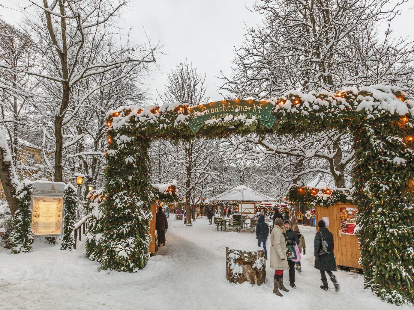 Trip Ideas tree snow outdoor Winter weather season christmas decoration group slope