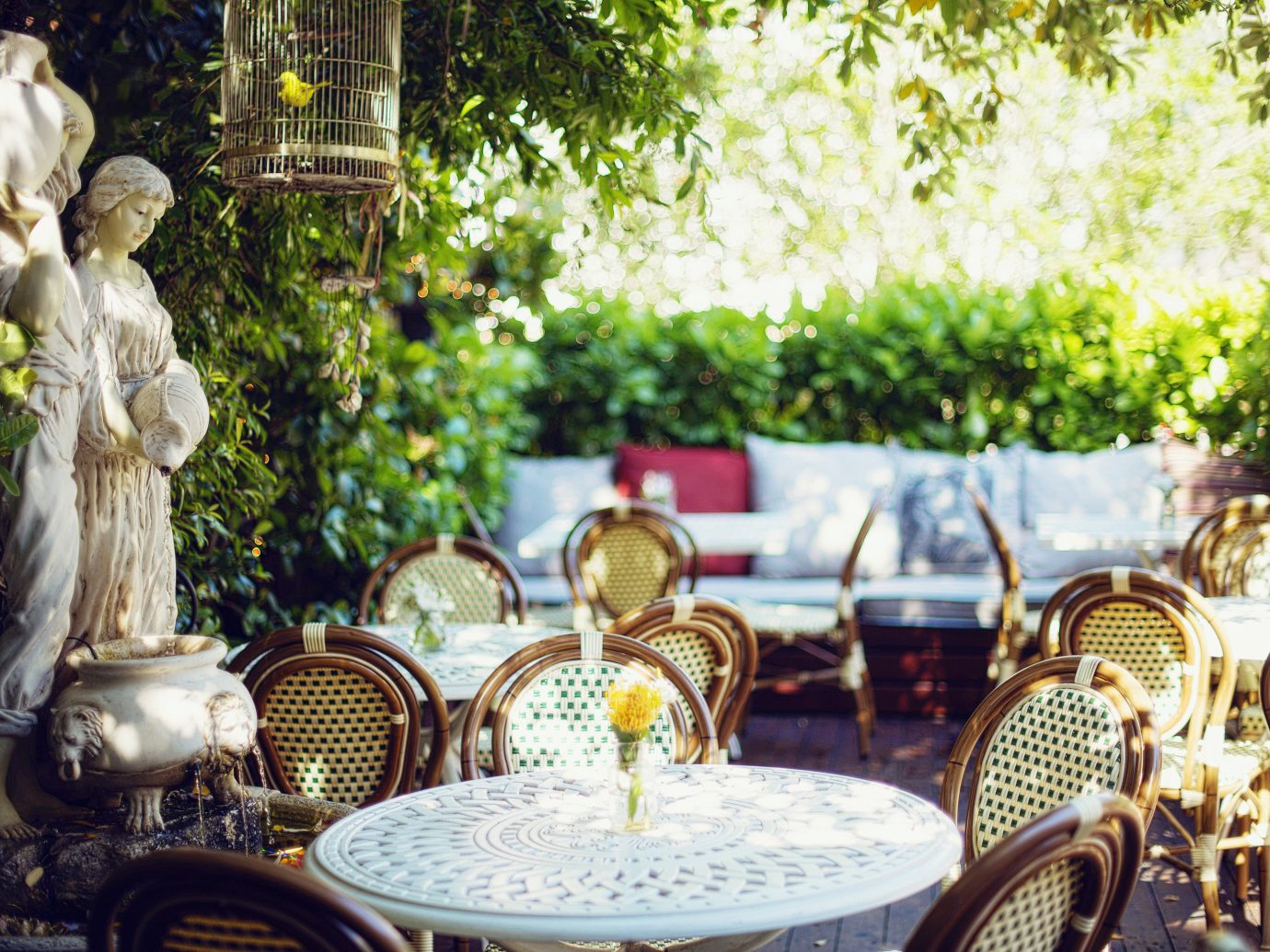 Food + Drink tree outdoor ceremony wedding meal