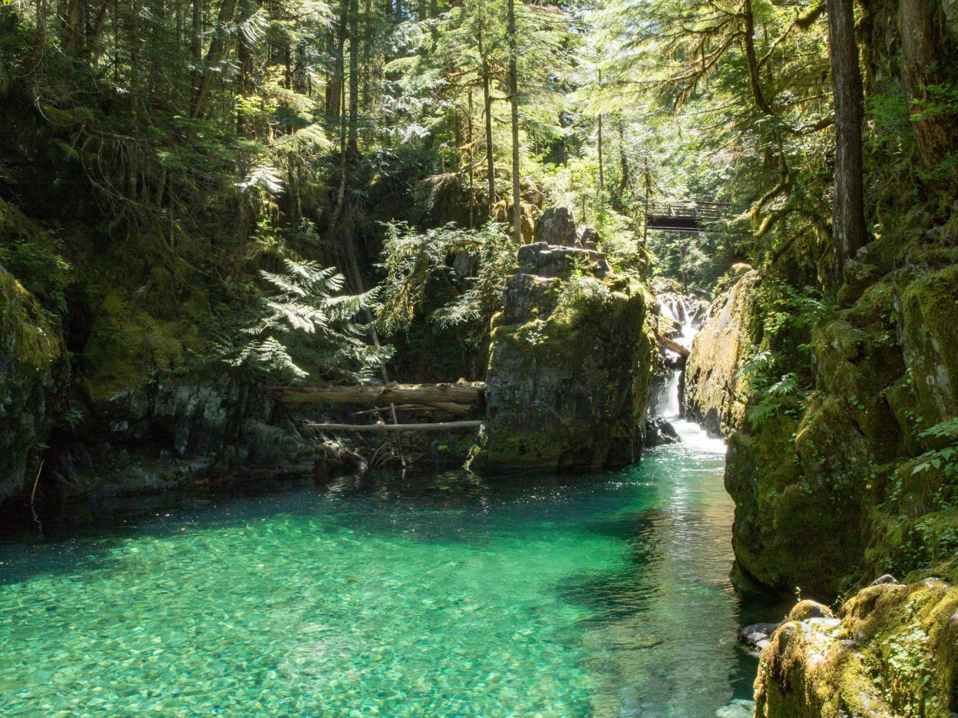 Trip Ideas tree outdoor body of water wilderness ecosystem creek watercourse stream Forest River plant woodland water feature valley Waterfall Lake rainforest trail surrounded