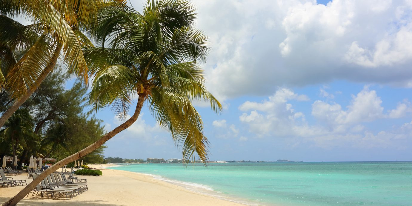 Trip Ideas sky outdoor tree water Beach shore body of water palm Sea caribbean Ocean Nature vacation Coast palm family tropics arecales woody plant bay sand cape Island Lagoon sandy