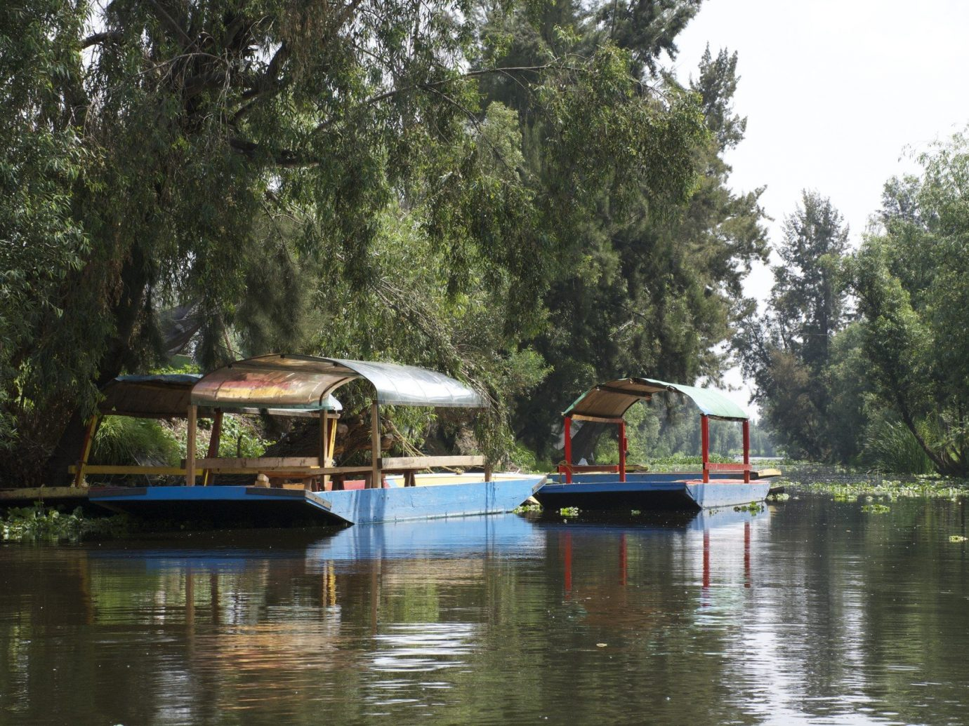 Boats calm Greenery Jetsetter Guides Lake Nature remote River serene trees water tree outdoor Boat bayou vehicle waterway boathouse boating Canal Raft Forest