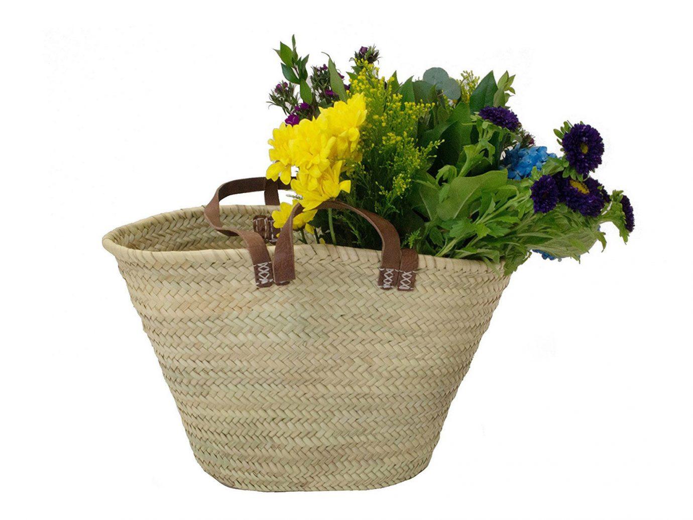 Style + Design flower indoor basket plant container floristry flowerpot flowering plant