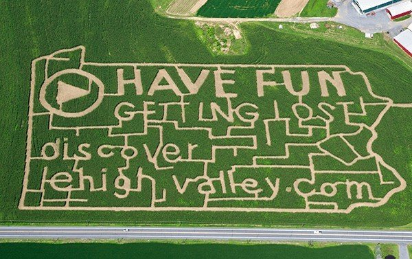 Trip Ideas grass green lawn sport venue sign stadium