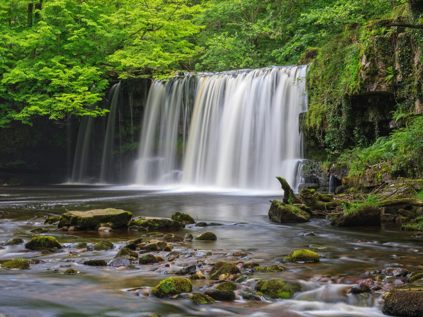 Jetsetter Guides Nature tree Waterfall water outdoor habitat body of water natural environment watercourse water feature creek stream River Forest rainforest wasserfall Jungle autumn national park