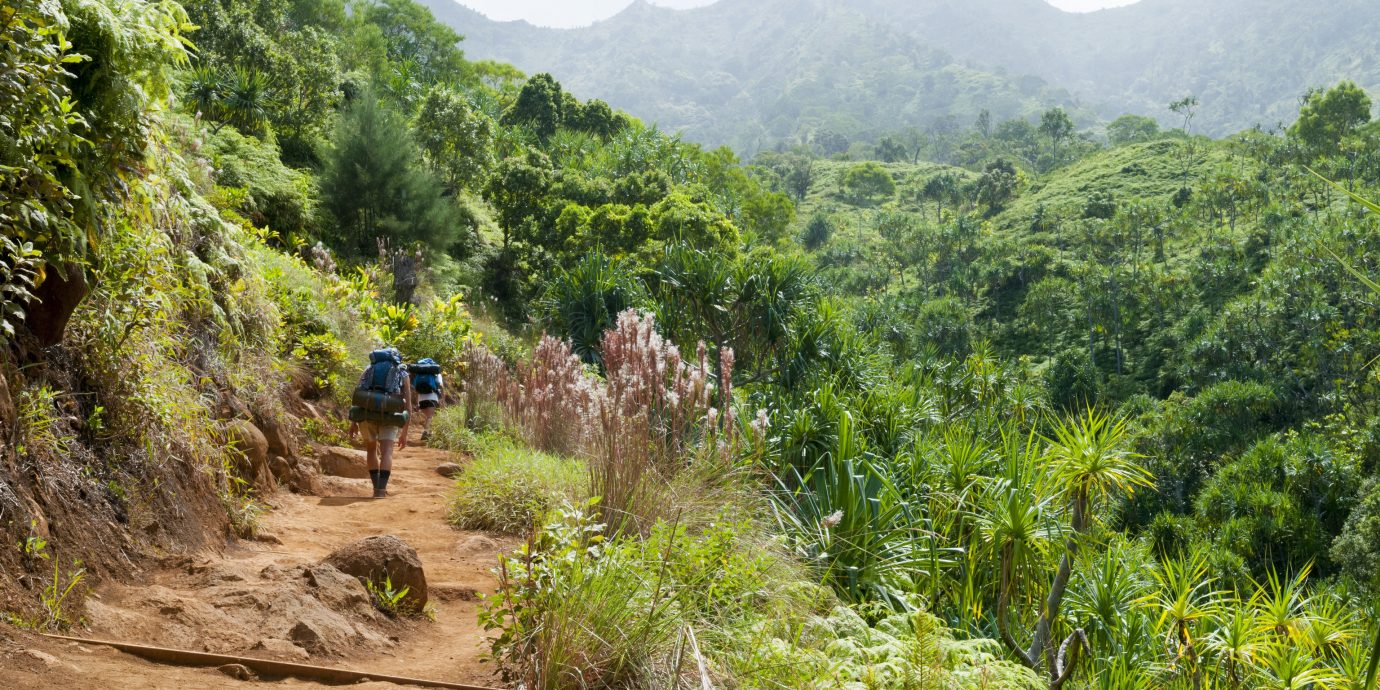 Health + Wellness Trip Ideas outdoor tree mountain ground habitat vegetation mountainous landforms Nature dirt trail path wilderness natural environment ecosystem geological phenomenon walking valley Forest Jungle soil rainforest hill Adventure ridge rural area wadi plateau hiking mountain range backpacking bushes plant surrounded wooded highland
