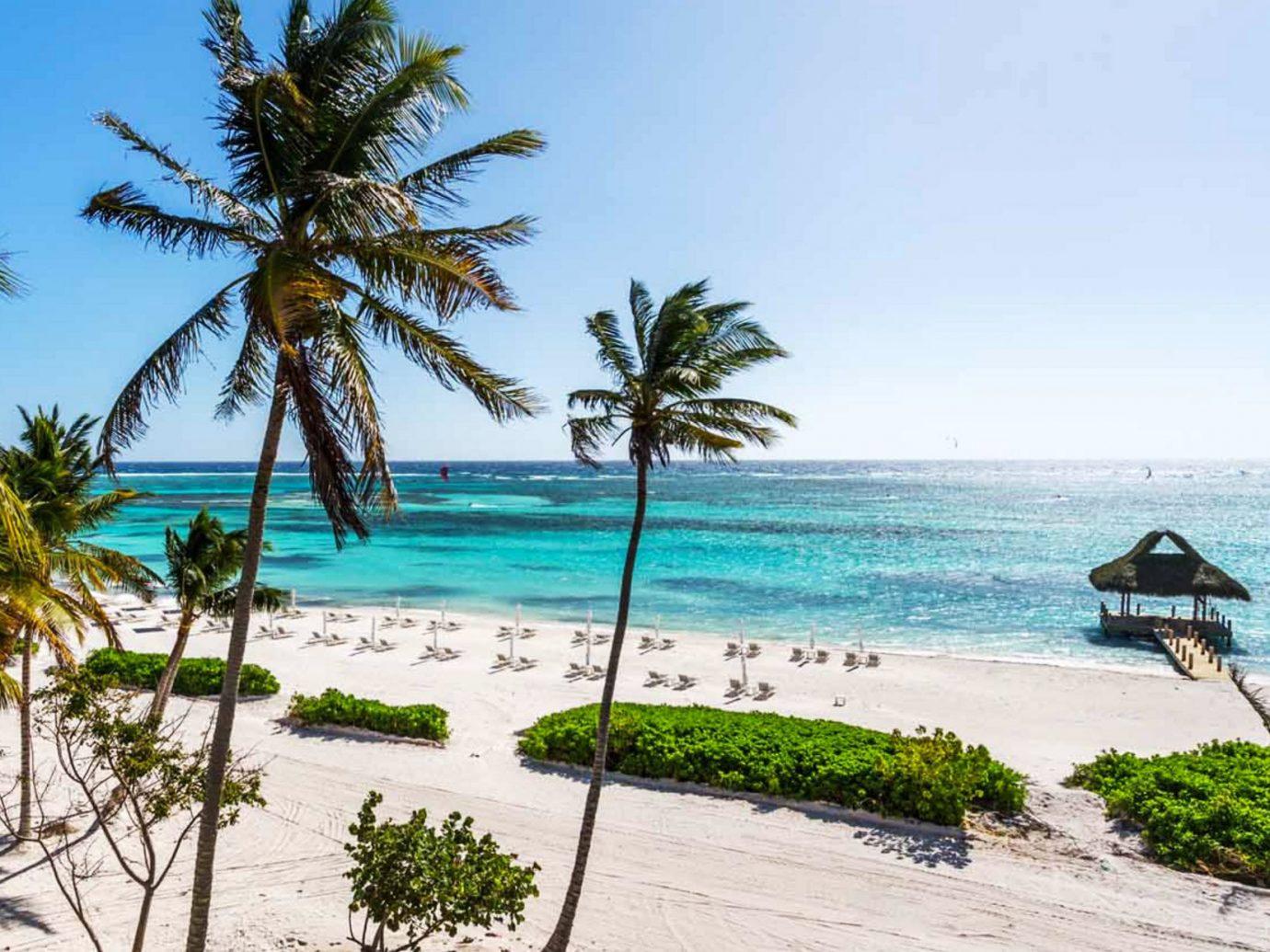 The Beach Outside The Westin Puntacana Resort In Dominican Republic