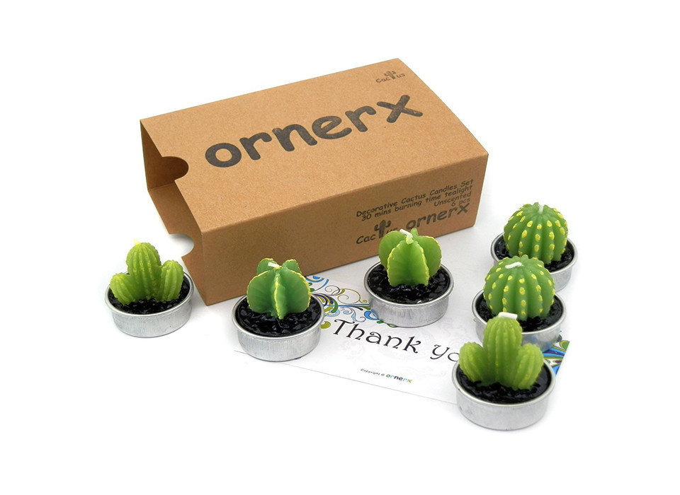 Gift Guides Travel Shop cactus product plant flowerpot product design vegetable