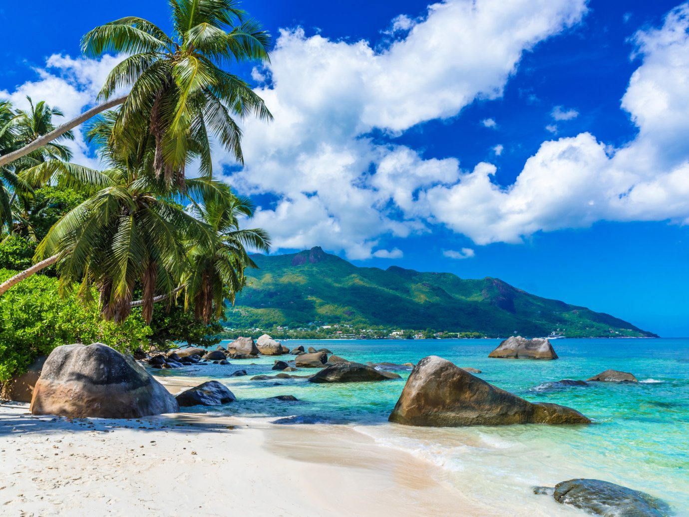 Trip Ideas sky tree outdoor water Beach Nature shore Coast landform geographical feature Sea body of water caribbean Ocean vacation tropics bay islet Island cove Lagoon arecales cape Pool rock swimming sandy
