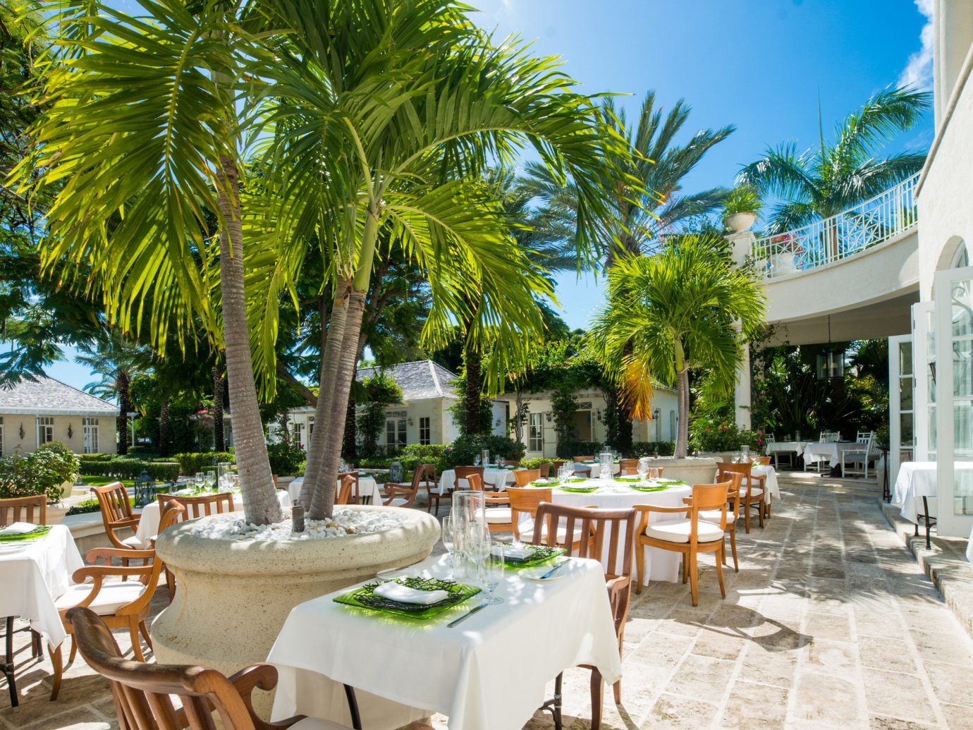 Hotels Romance tree table outdoor chair Resort restaurant Dining estate vacation arecales meal caribbean plaza area palm furniture plant Garden