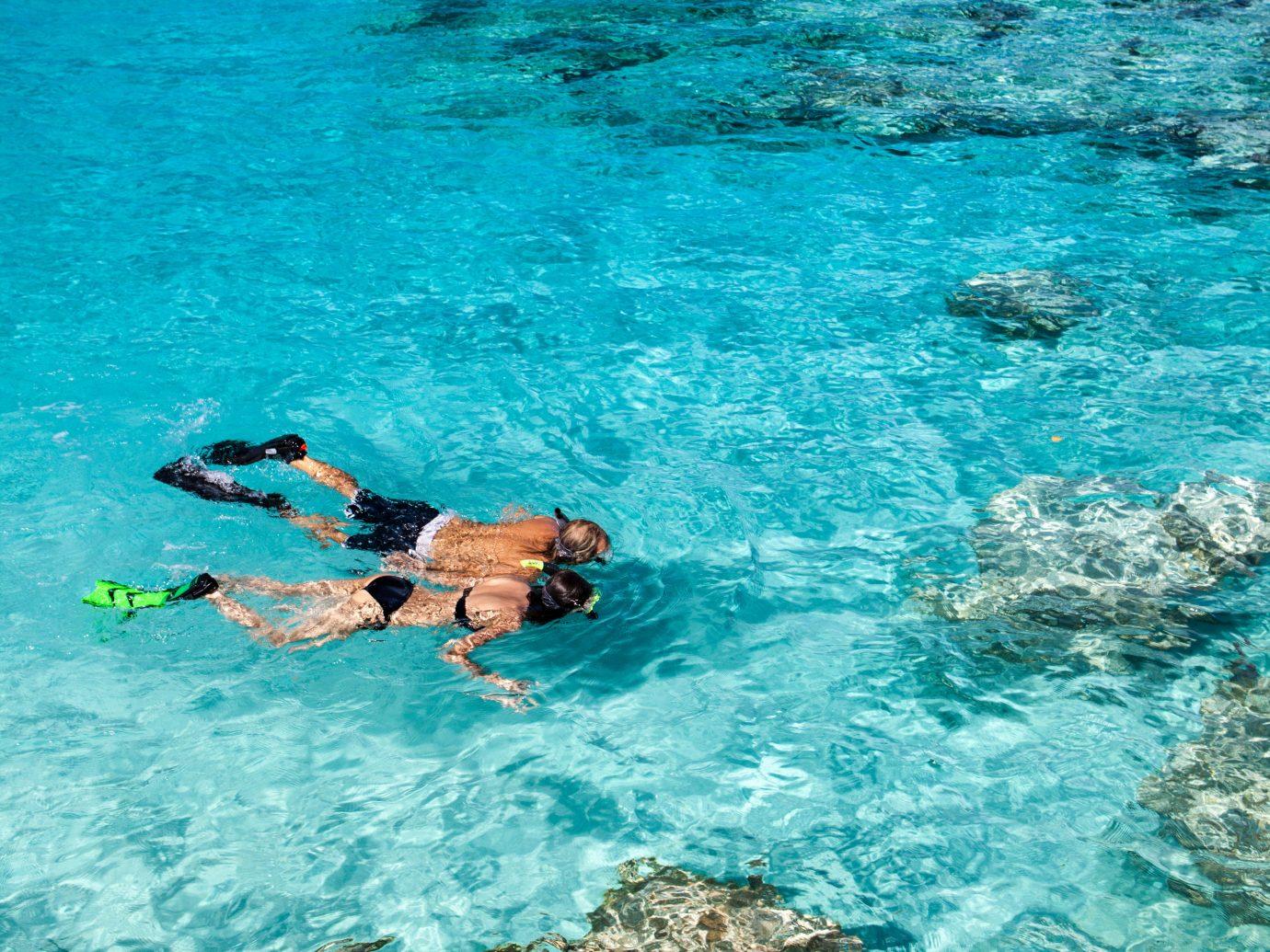 Hotels Offbeat water Sport outdoor marine biology Sea swimming underwater water sport reef coral reef Ocean biology diving blue outdoor recreation snorkeling sports ocean floor