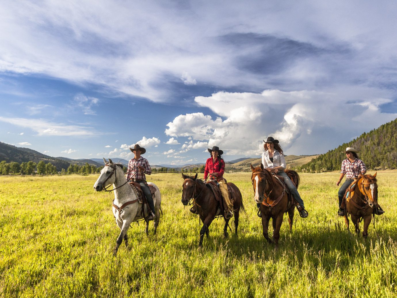 Glamping Hotels Luxury Travel Outdoors + Adventure Trip Ideas grass outdoor sky field pasture grassland horse prairie grassy plain trail riding steppe meadow group rural area landscape animal sports agriculture equestrianism horse like mammal Ranch herd mammal lush