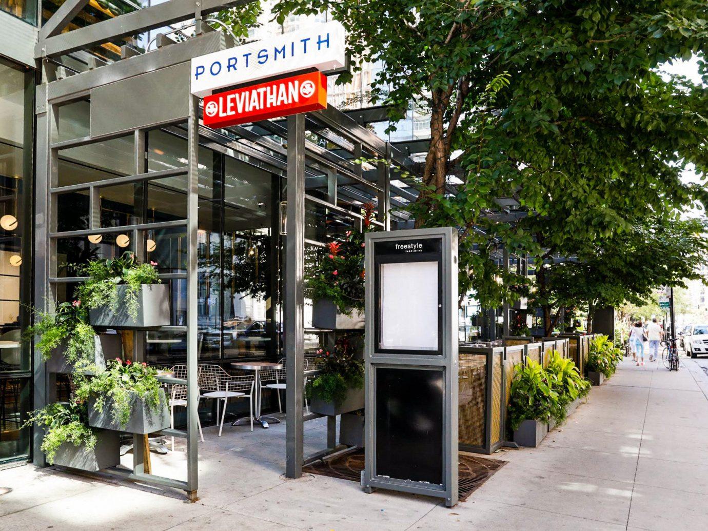 Food + Drink tree outdoor ground sidewalk City street curb