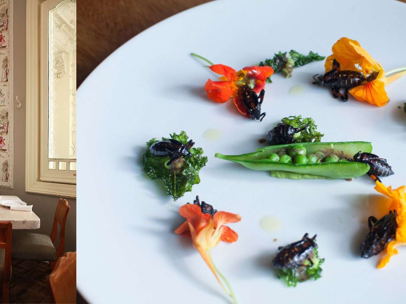 Trip Ideas plate food meal dish white produce brunch flower lunch vegetable dinner arranged meat piece de resistance