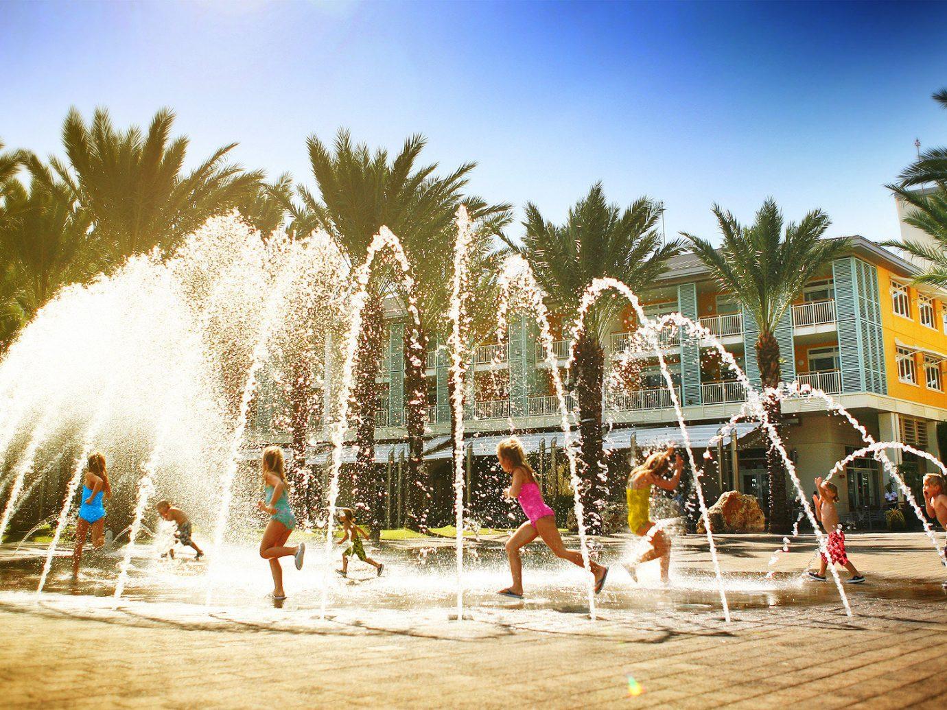 Trip Ideas tree outdoor sky amusement park arecales Resort fountain water feature park